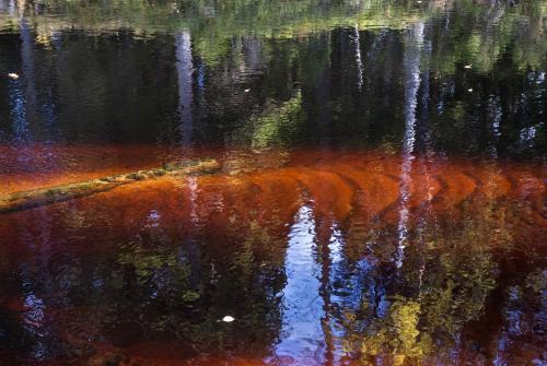 Hannu Juvonen, Veden värejä